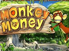 На игровом портале играть на деньги в Monkey Money
